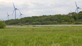 http://www.windvernunft-kiel.de/admin/functions/thumbnail.php?f=includes/media/fotoalbum.molfseeeiderblick.jpg&w=270&h=152&q=85